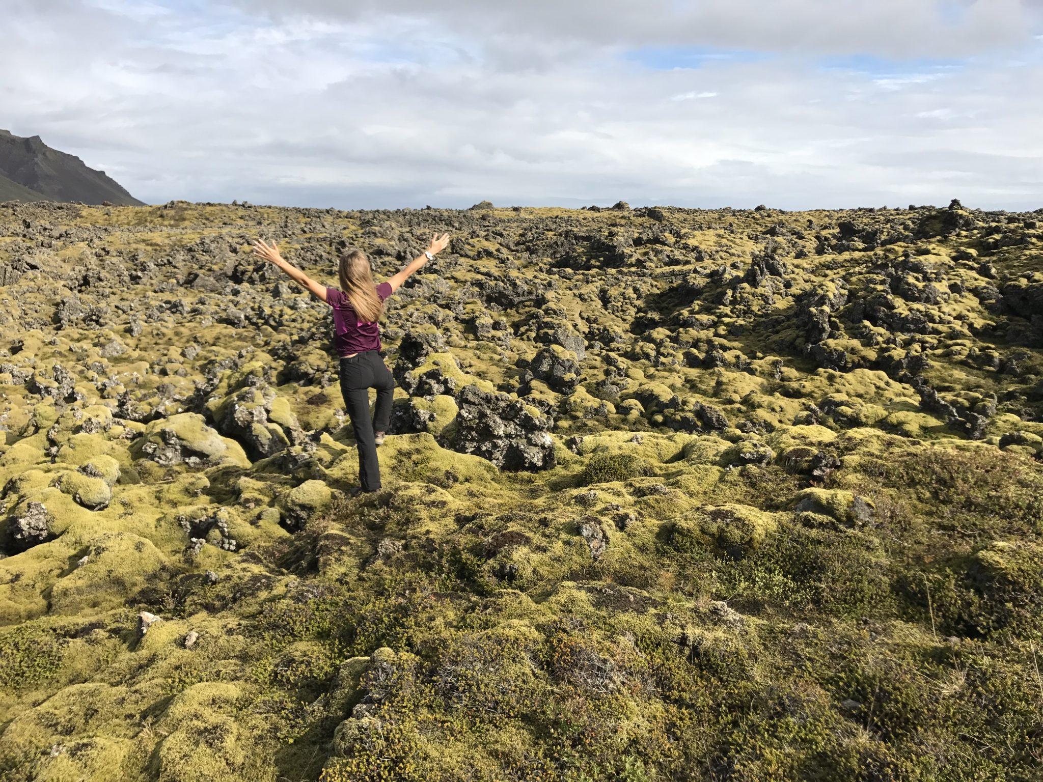 Islande jour 4 et 5 : Musée du requin et fjords de l'ouest