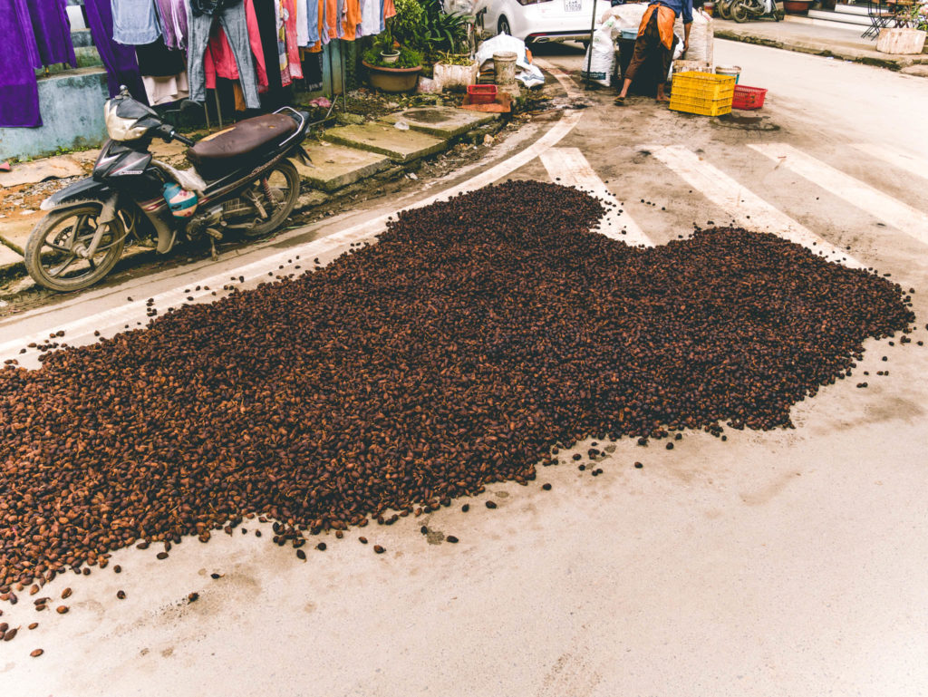 Cardamone dans les rues de Sapa