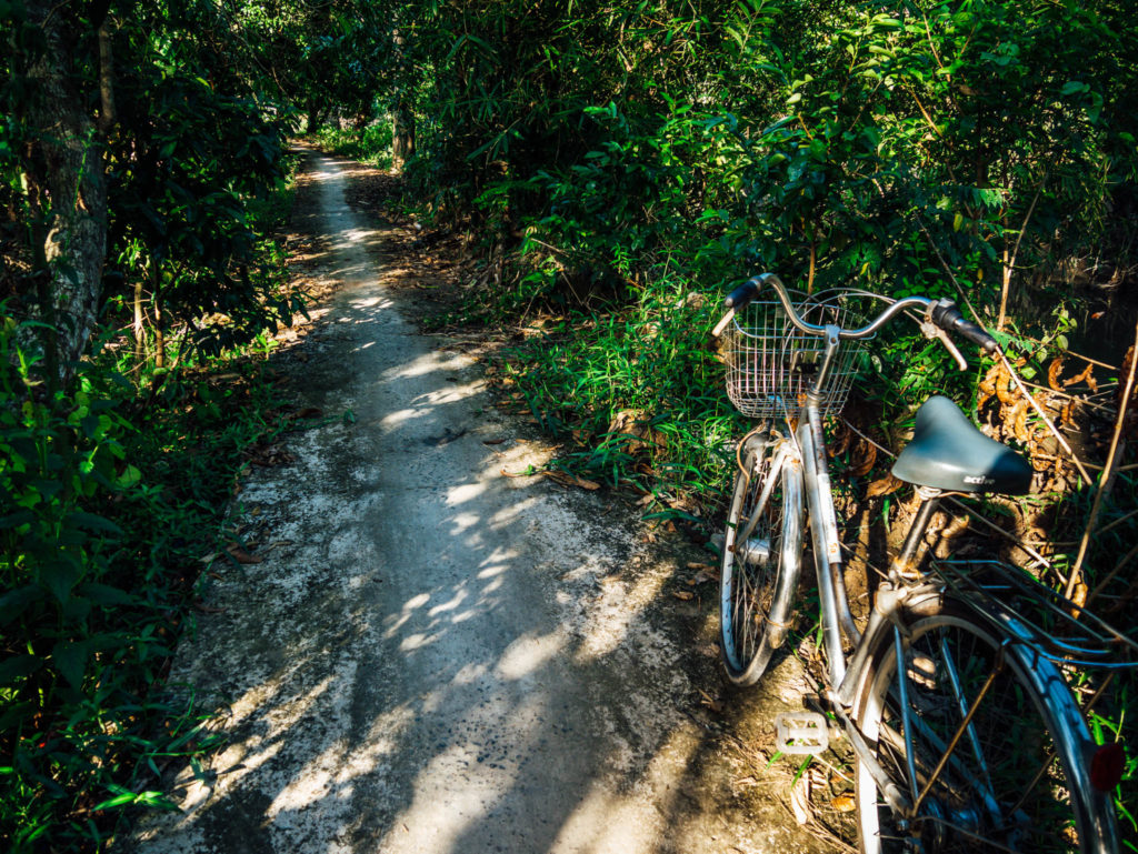 Les chemins le long du mékong