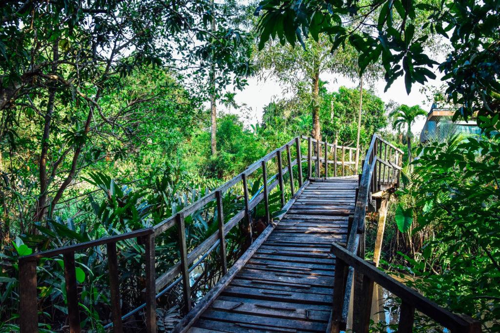 Un pont pour traverser le fleuve