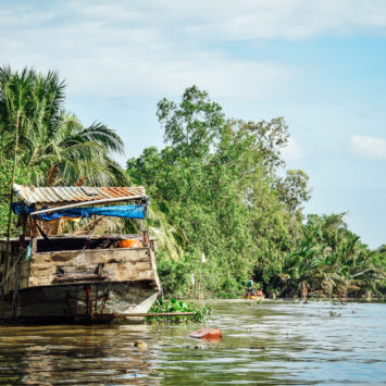 Le delta du Mekong, la déception