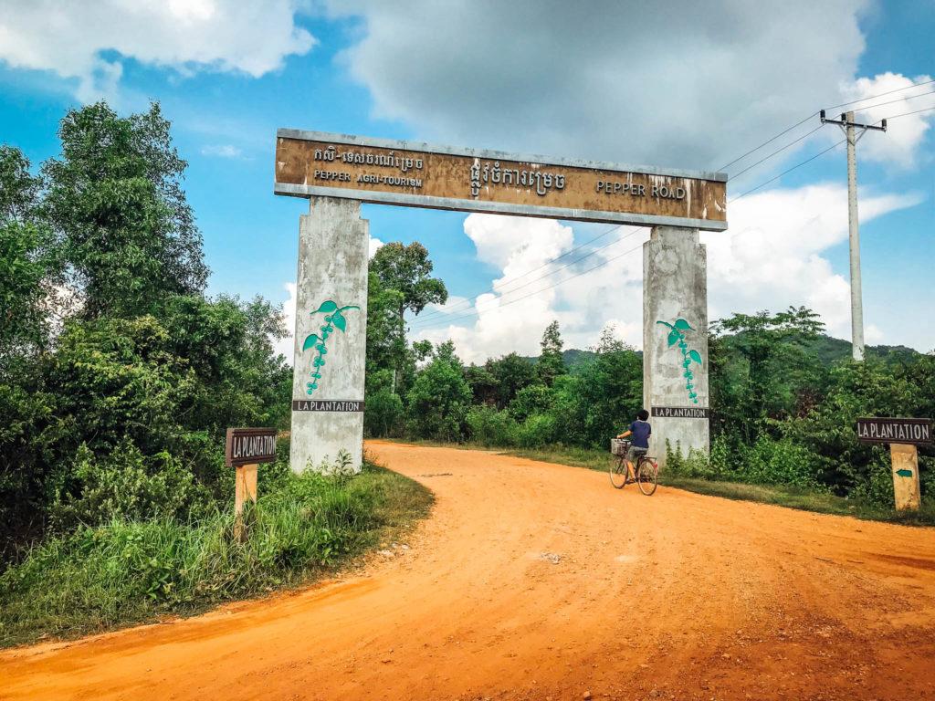 L'entrée avant 2km de piste pour découvrir les plantations de poivre