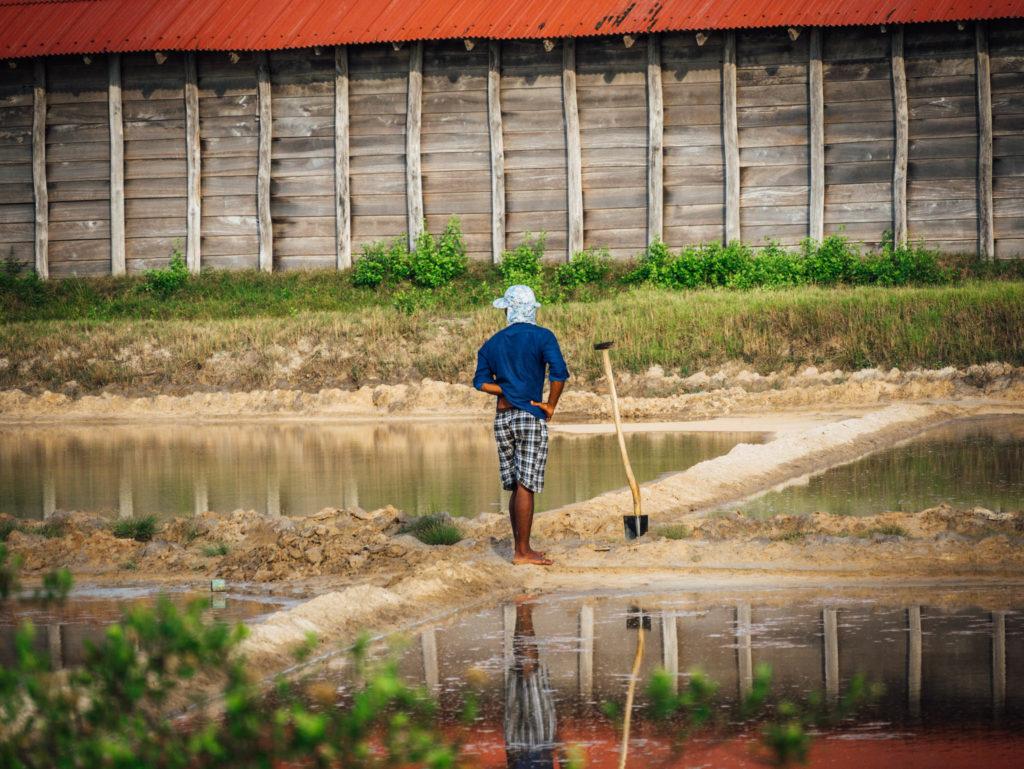 Travailleur dans les marais salants