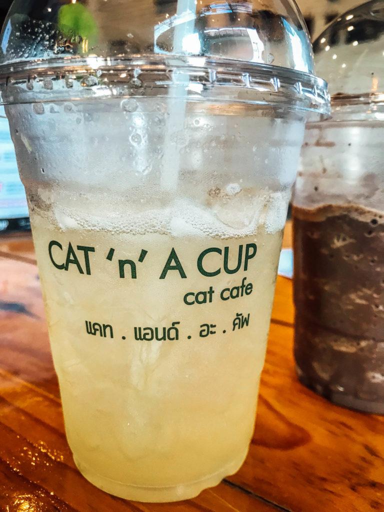 Cat'n'cup café