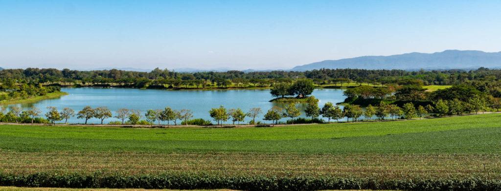 Le parc Singha