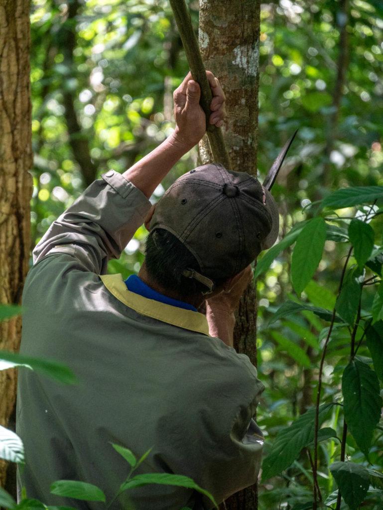 Un des guides nous taille un bâton de marche en bambou