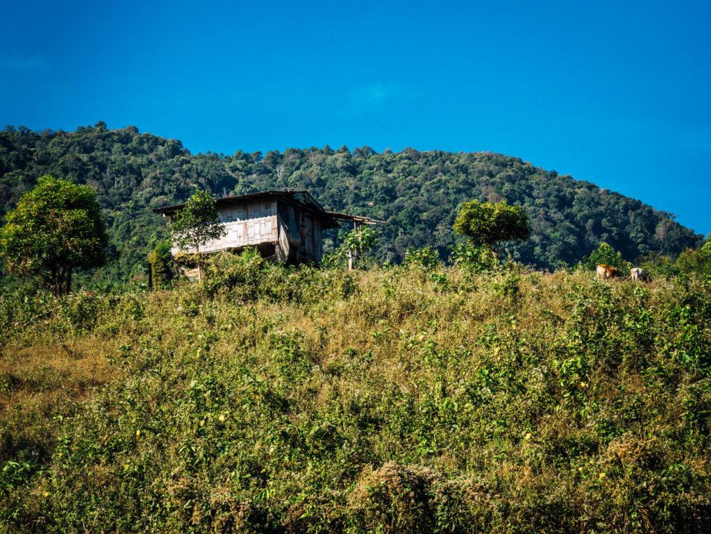 Une maison perdue dans la campagne
