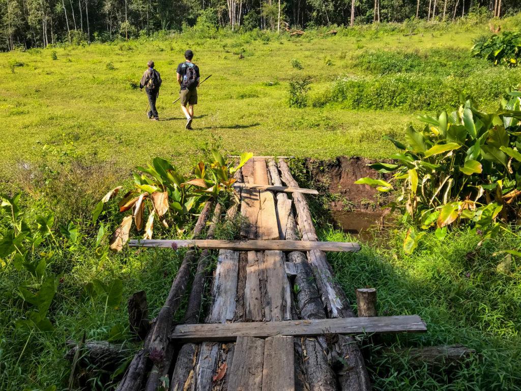 Un joli pont en bois menant à une clairière