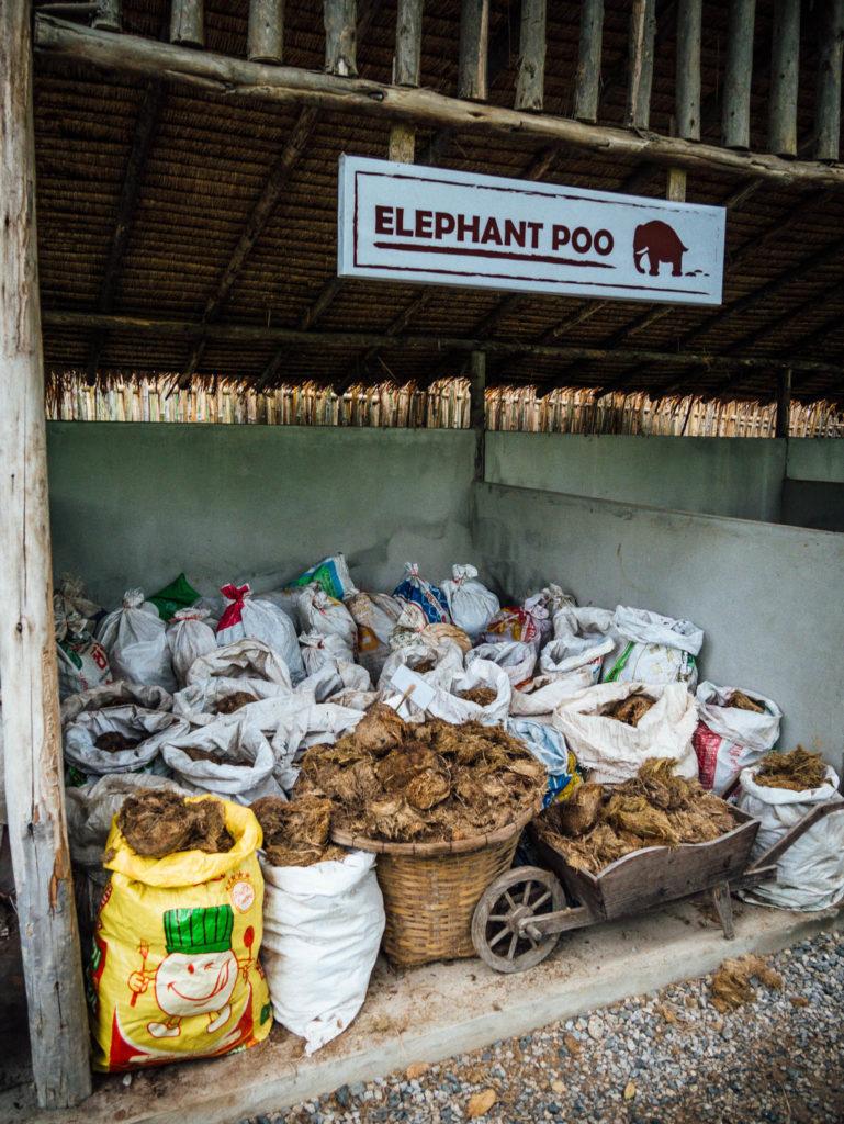 Les sacs de cacas d'éléphants