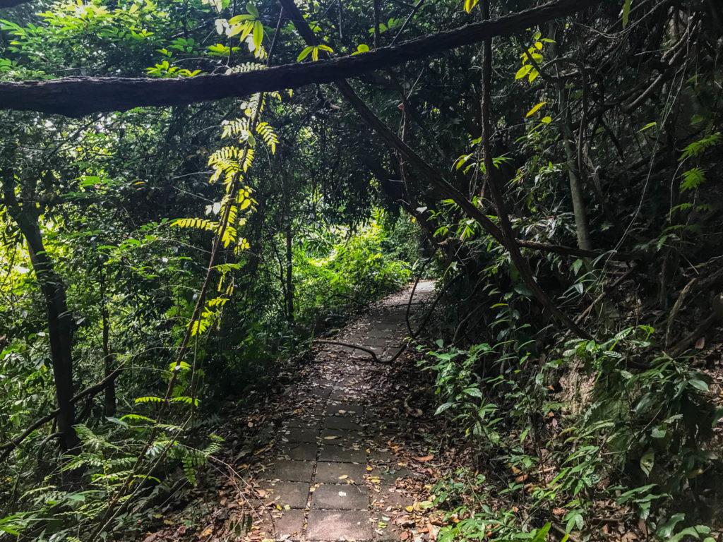 Une portion du chemin de randonnée