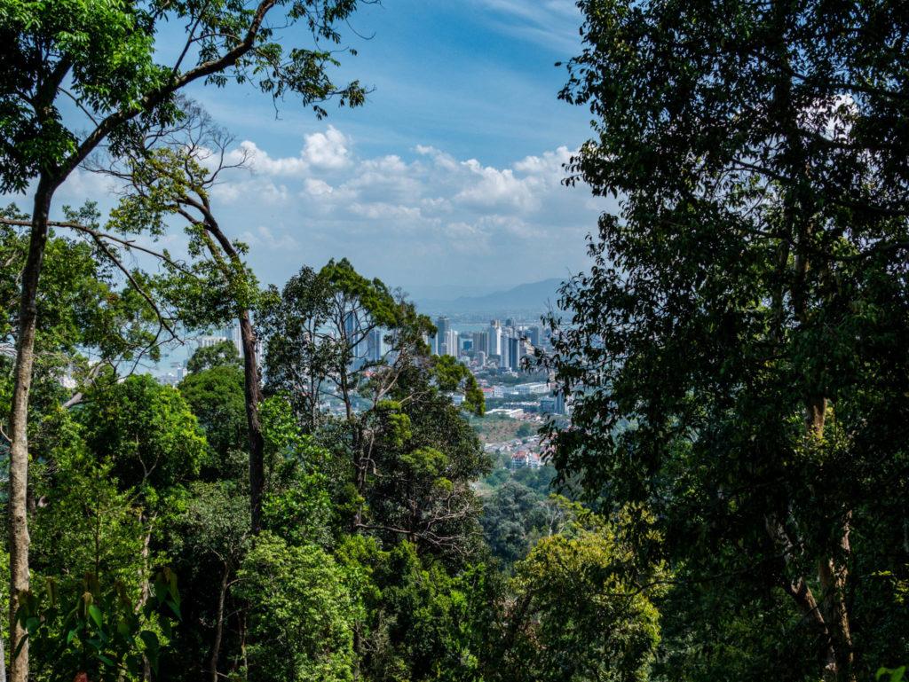 Nature et urbanisation