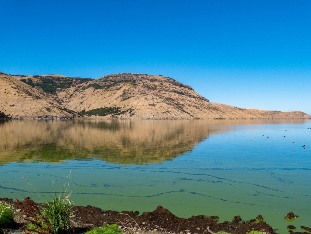 un lac envahi de didymo, une algue toxique pour la flore locale