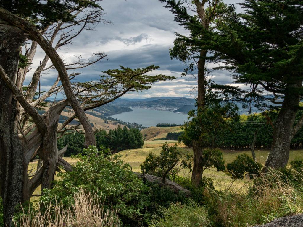 Vue depuis la péninsle d'Otago