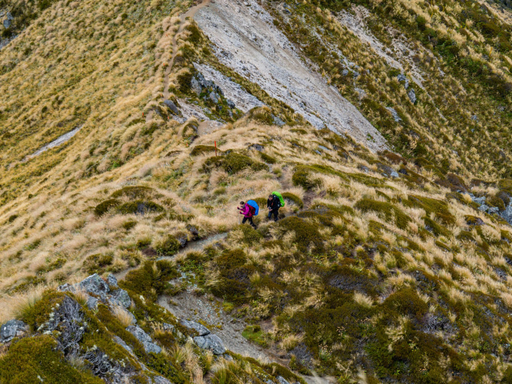 Dans les montagnes du kepler track