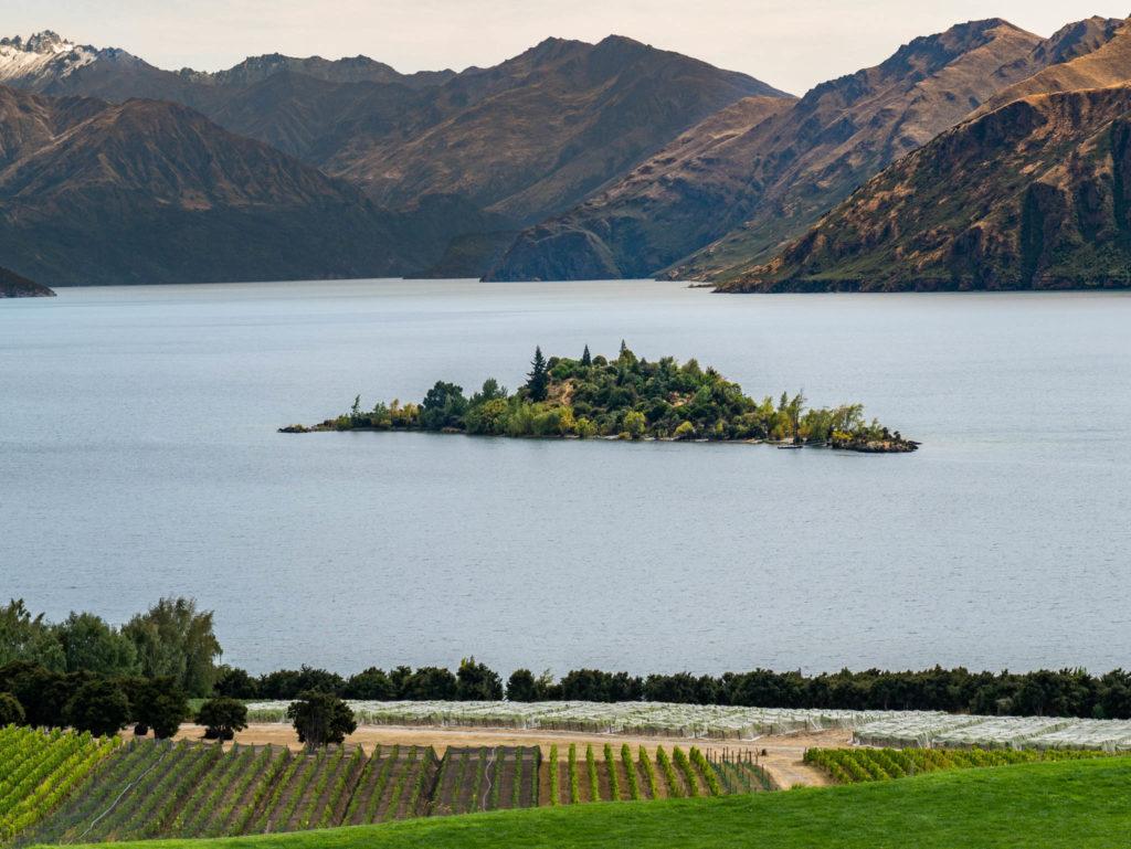 Une petite île au centre du lac de Wanaka