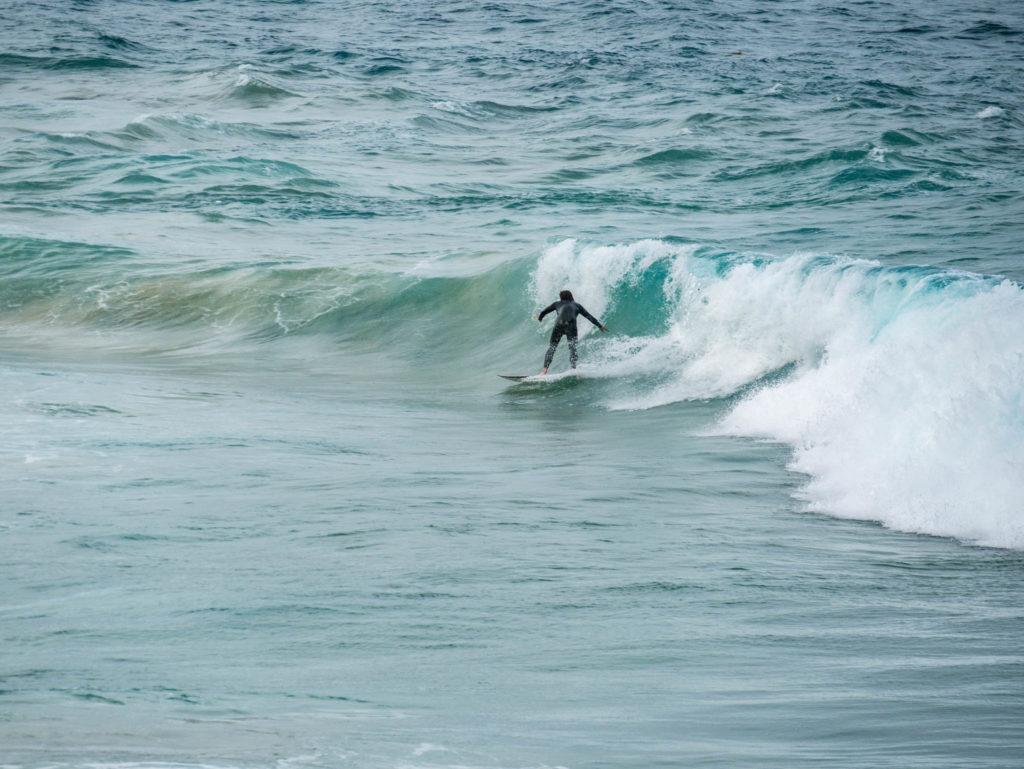Un surfeur à Bondi